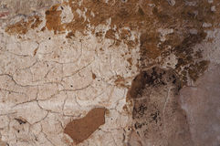 Old weathered wall texture. Stock Photos