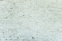 Old weathered white brick wall Royalty Free Stock Photo