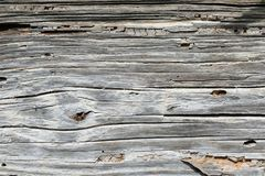 Old weathered wood background or texture stock image