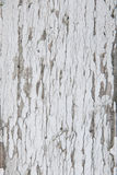Old weathered wood board texture. With white paint and chips Royalty Free Stock Images