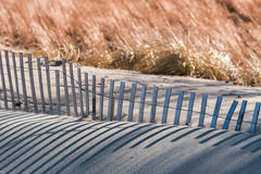 Old weathered wood fence along beach with long shadows from afternoon sunlight. Beach grass blowing in wind behind wood protective boundary fence along beach to stock photo
