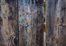 Old Weathered Wood Gate  with Metal Brads Background. Old weathered wood gate with metal brads for background or texture Royalty Free Stock Photo