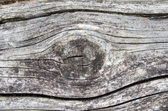 Old weathered wood with a knot Royalty Free Stock Photos