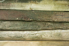 Old weathered wood planks covered with green moss Royalty Free Stock Photo