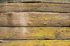 Old weathered wood planks covered with yellow moss Royalty Free Stock Photo