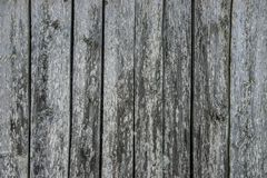 Old weathered wood planks. Royalty Free Stock Photos