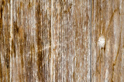 Old weathered wood planks texture.  Royalty Free Stock Images