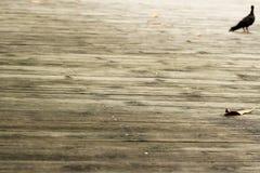 Old weathered wood planks Stock Image