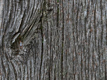 Old weathered wood Royalty Free Stock Images