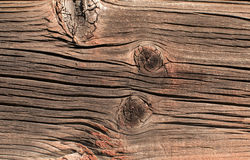 Old weathered wooden board Stock Image