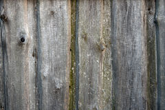 Old weathered wooden wall surface close up Stock Photography