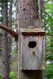 Old weathered worn bird house Royalty Free Stock Photography