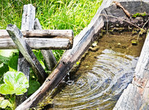 Old well Royalty Free Stock Images