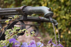Old well with flowers. An old well made of iron in a park surrounded by blue flowers royalty free stock photography