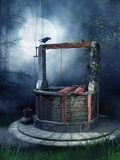 Old well with a raven Stock Photos