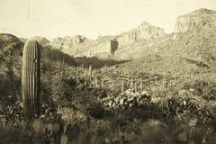 Old west landscape Stock Photos