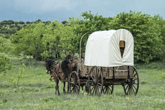 Old western covered wagon in Texas plains. Looking for settlement Stock Photo