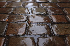 Old wet cobblestone in the rain Royalty Free Stock Photo