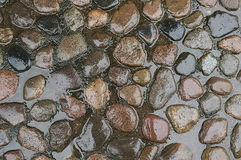 Old wet stone pavement background. Texture close up Stock Images