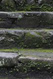 Old wet stone steps. Filled with moss, macro texture Royalty Free Stock Photo