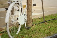 Old wheel bicycle on a green background. Royalty Free Stock Photography