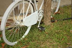 Old wheel bicycle on a green background. Royalty Free Stock Images
