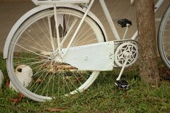 Old wheel bicycle on a green background. Royalty Free Stock Image