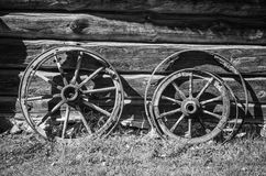 Old wheel from carts Stock Image