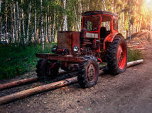 Old wheel tractor in the woods. Old wheeled tractor harvests timber in the forest Stock Photography
