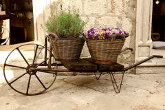 Old wheelbarrow with baskets of flowers Stock Images