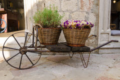 Old wheelbarrow with baskets of flowers Stock Photos
