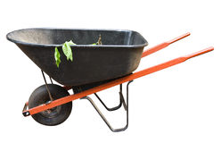 Old Wheelbarrow Isolated Stock Photos