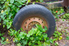 Old wheels. Abandoned  abstract antique auto old Stock Photography
