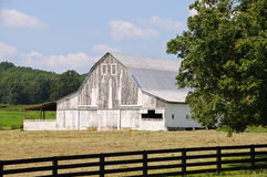Old White Barn Stock Photo
