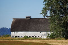 Old white barn. A old white barn stands strong after many years of use Stock Photography