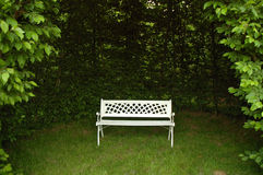 Old white bench Stock Photo
