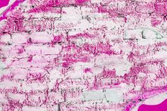 Brick wall locally painted with pink paint royalty free stock photo