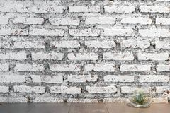 An old white brick wall, rustic background stock photos