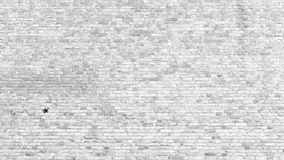 Old white brick wall texture background Royalty Free Stock Images