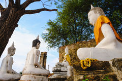 Old white Buddhist statue. Stock Images