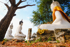 Old white Buddhist statue. Old Buddhist statue at Wat Sri Rattana Mahathat. this old temple built 600 years ago in Suphanburi, Thailand Stock Images