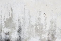 Old white dirty wall texture Stock Photography
