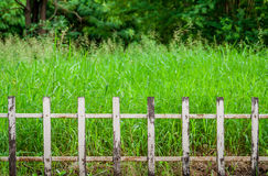 Old white fences Stock Photo