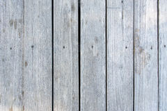 Old White gray wood wall for background texture Royalty Free Stock Photos