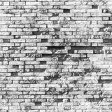 Old white grungy brick wall, square texture Stock Photos