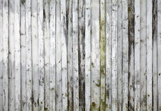Old white new wooden wall background texture Stock Photography