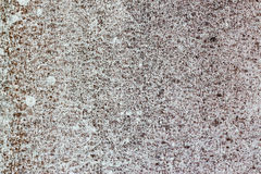 Old white-painted wall with mold stains as abstract background. A close-up shot of an old white-painted concrete wall with mold stains as abstract background royalty free stock photos