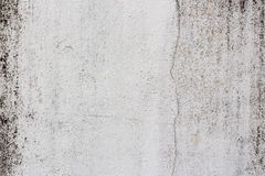 Old white-painted wall with mold stains as abstract background Stock Image