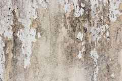 Old white-painted wall with mold stains as abstract background. An abstract background picture of an old white-painted wall with mold stains and exfoliating stock photography