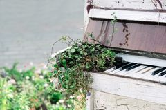 Old white piano in a park Royalty Free Stock Photography
